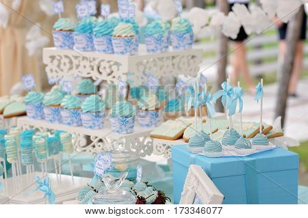 Delicious sweet cupcakes and candies, decorated in wedding style with labels and colored custard