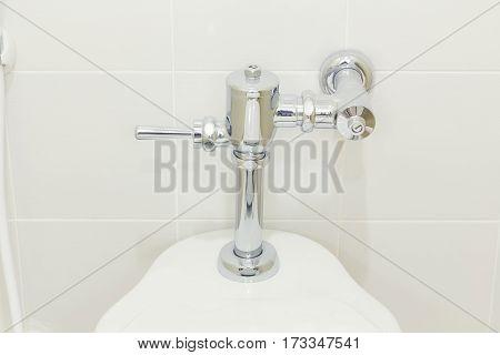 Flush valve on water closet in toilet.