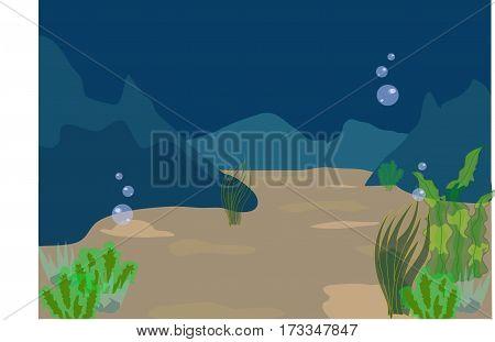 underwater, undersea life, sea bottom, a depth