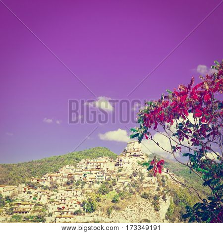 Red Leaves on the Background of Medieval Italian City on a Hilltop Instagram Effect
