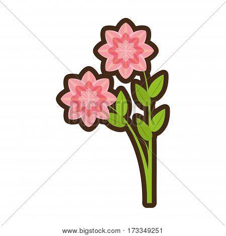 cartoon petunia flower nature spring vector illustration eps 10