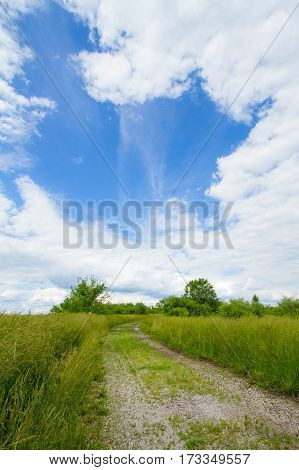 Gravel road or pathway going through a meadow