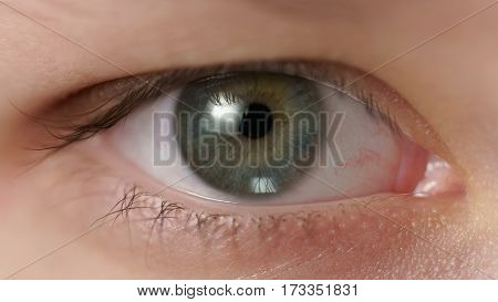 Closeup of teenage girl green eye looking straight, shallow focus