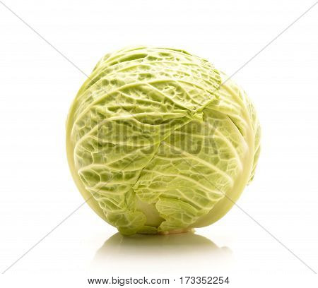 cabbage isolated on white background in studio