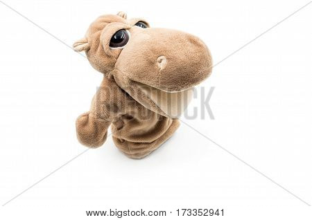 toy hippo is laying on the white background