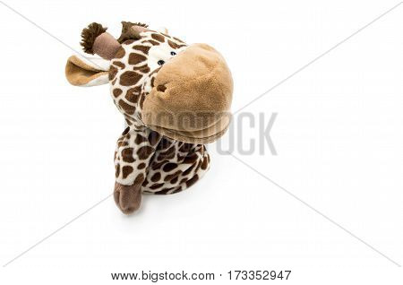toy giraffe is laying on the white background
