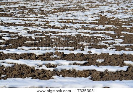 winter soil structure . Background . northern Bohemia czech republik