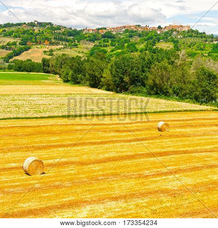Tuscany Landscape with Many Hay Bales on the Background of the Medieval City