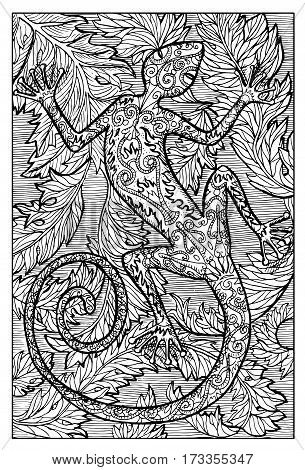 Salamander, fire lizard, sitting on leaves. Hand drawn vector illustration. Engraved line art drawing, black and white doodle.