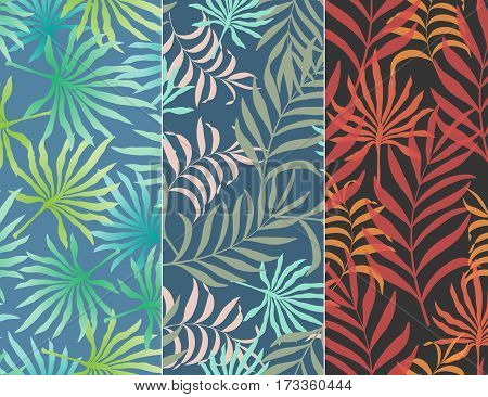 Set of three seamless floral pattern. Tropical background with palm leaves