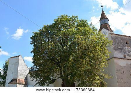 Fortified medieval saxon church Bunesti, county Brasov, transylvania, Romania. poster