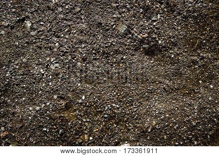 Soil, texture of the soil, soil texture, nature background, ground, stony ground