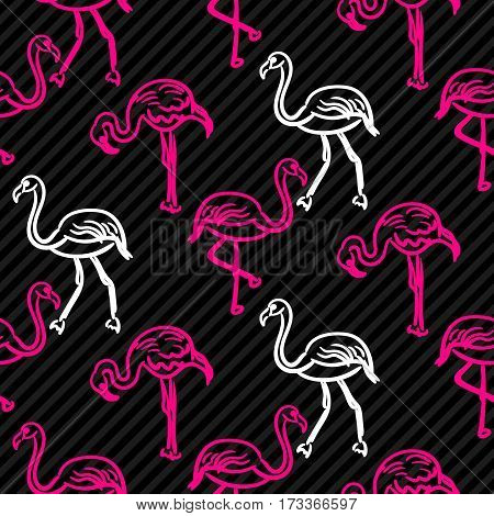 Black and pink striped flamingo bird pattern. Outline hand drawn doodle Hawaii birds seamless vector background.