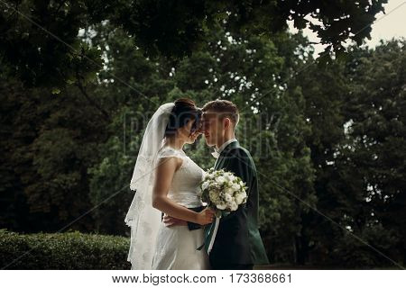 Romantic Newlywed Couple Hugging Under Tree In Park, Handsome Sensual Groom With Beautiful Brunette