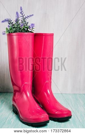 Gumboots on wooden wall background. Spring concept