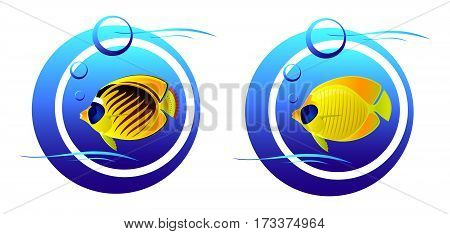 Set of stylized fish in the sea air balls. Vector illustration