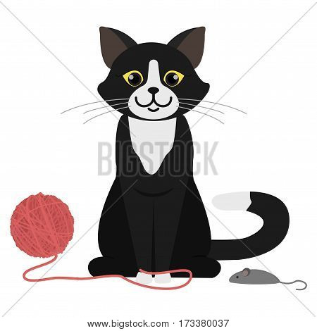 Cat Vector Illustration