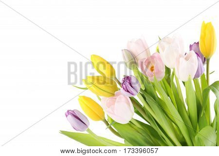 Bouquet Of Tulips Isolated On A White