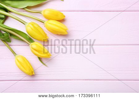 Bouquet Of Tulips On Pink Wooden Table