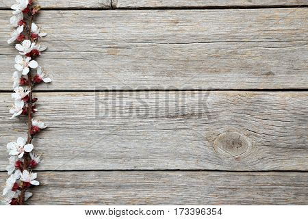 Tree Branches With Flowers On Grey Wooden Table