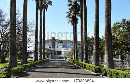 IRVINE, CALIFORNIA - FEBRUARY 24, 2017: Katie Wheeler Library. A palm lined lane leading to the replica of the original Irvine Family home, that now serves as the library.