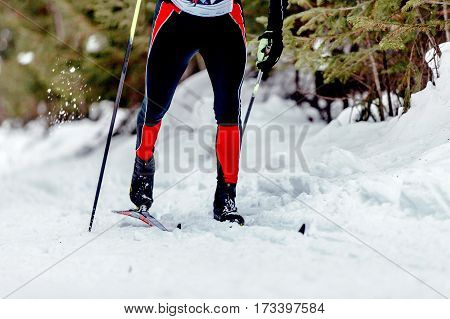 skier athlete classic style sport of cross-country skiing