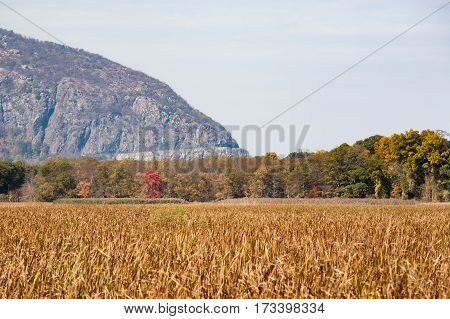 The road on Storm King Mountain is visible from Constitution Marsh a 270 acre wildlife sanctuary on the Hudson River.