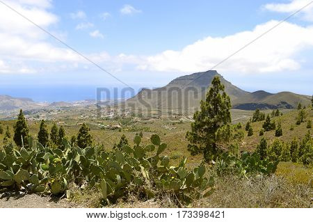 Boca Tauce in Mount Teide National Park view of the Atlantic coast in Tenerife