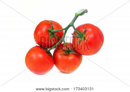 Closeup bunch of red tomatoes isolated on a white background.food ingredient.
