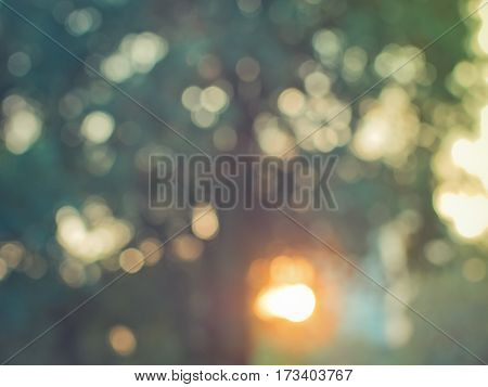 Abstract colorful blur de focused background shadow tree with sunlight, soft focus / De focused sunlight bokeh twinkling lights background