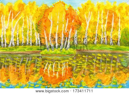 Hand painted picture watercolours - autumn landscape yellow birch forest with reflection in water and little island with birches. Painted from real landscape in park Sokolniki in Moscow. Size of original 28 x 19 sm.