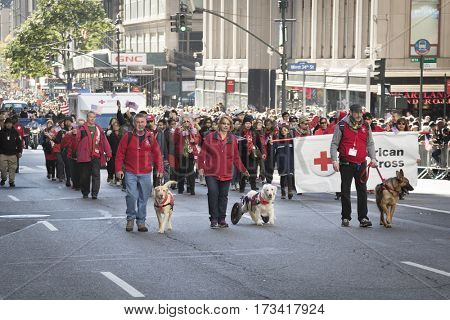 NEW YORK - 11 NOV 2016: American Red Cross therapy service dogs walk in front of the parade banner in Americas Parade up 5th Avenue on Veterans Day in Manhattan.