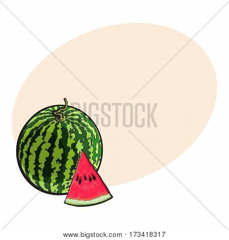 Whole striped watermelon with curled up tail and triangular piece with seeds, sketch style vector illustration with place for text. Realistic hand drawing of whole ripe watermelon and slice