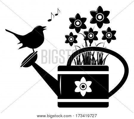 vector daffodils in watering can and bird isolated on white background