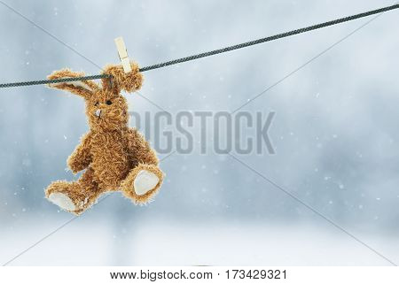 soft toy rabbit hanging from a rope wearing a clothespin on the ear