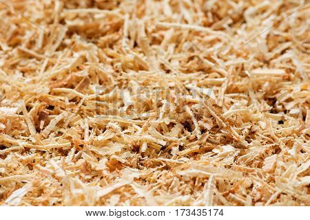 Wooden sawdust texture close up. Abstract background