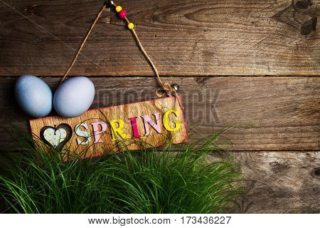 Easter Eggs on Fresh Green Grass on Wooden Background. Horizontal with Copy Space. Easter or Spring Concept. Toning.