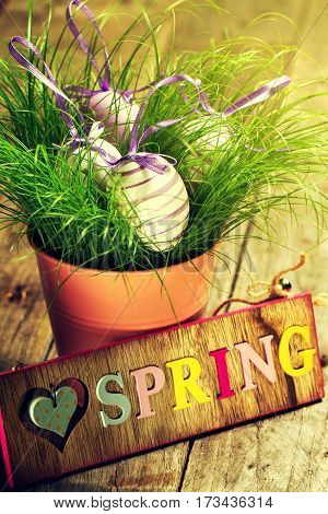 Easter Eggs on Fresh Green Grass in Flower Pot on Wooden Background. Easter or Spring Concept. Toning.