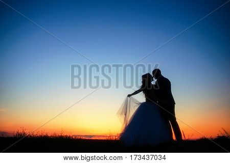 Wedding Couple In Field. Bride And Groom Together.