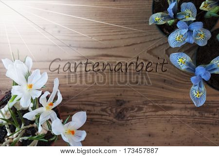 Wooden Background With German Text Gartenarbeit Means Gardening. Sunny Spring Flowers Like Grape Hyacinth And Crocus. Aged Or Vintage Style