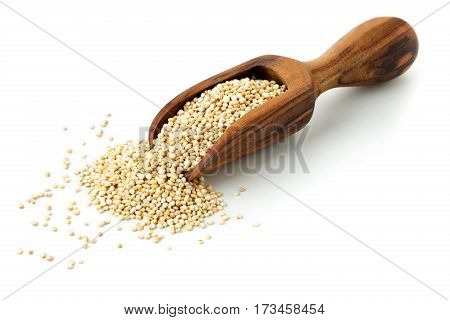 Raw whole unprocessed quinoa seed in wooden scoop over white background