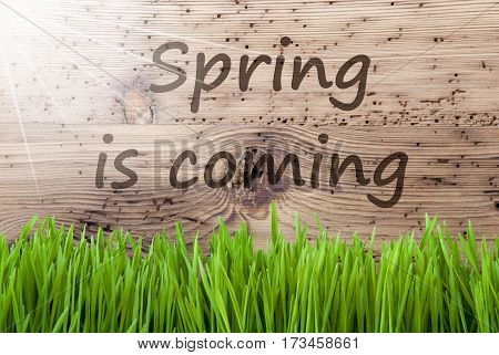 English Text Spring Is Coming. Spring Season Greeting Card. Bright, Sunny And Aged Wooden Background With Gras.
