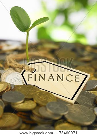 coin with plant growing and a wooden tag with word finance