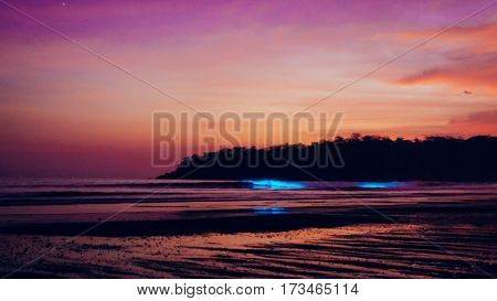 Bioluminescence in the ocean in the blue hour