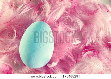 Single pastel Easter egg lying on feathers.