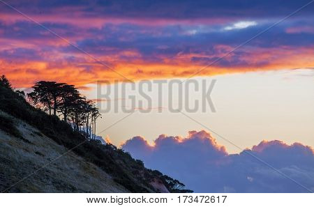 Tree Silhouettes On A Hill At Golden Sunset. Clouds Glowing In Orange Minimalistic Landscape.
