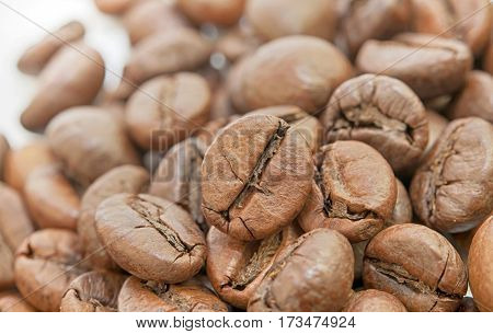 a grains of coffee. A close up