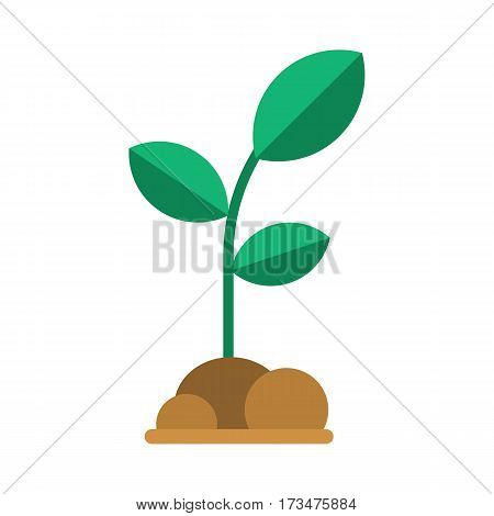 Green seedling with leaves and soil. Abstract growing plant vector illustration. Spring sprout icon in flat design. Growing and gardening symbol.