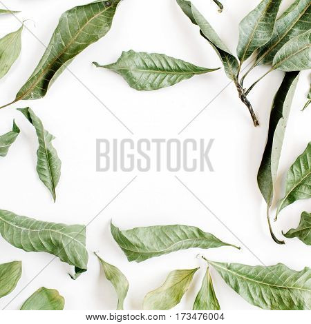 Green leaves frame on white background. Flat lay top view.