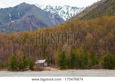 Abandoned wooden house in the forest nearby mountains